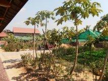 Upgradovaná zahrada